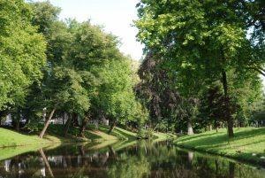 wandelcoaching, bunnik, natuur, utrecht, wandelen, bos, amelisweerd, rhijnauwen